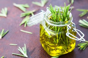 Rosemary boost your memory