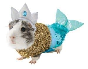 Guinea Pig Mermaid Costume