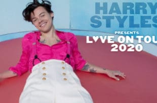 Harry Styles tour photo