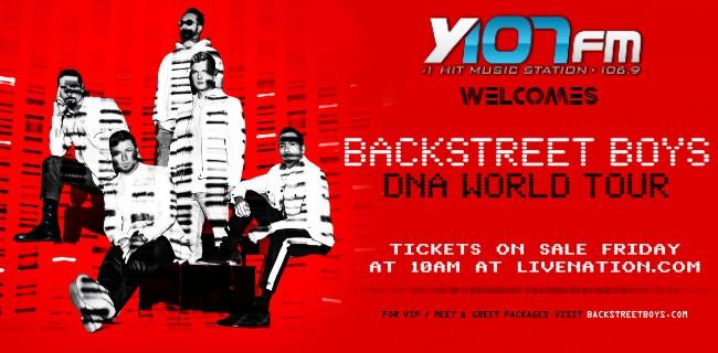 Backstreet Boys DNA tour poster