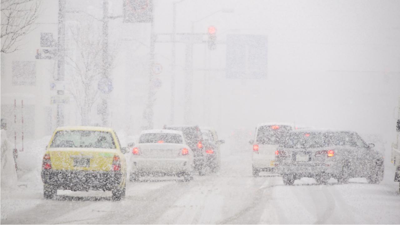 Cars driving through a blizzard