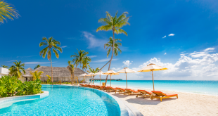 Luxurious beach resort hotel swimming pool and beach chairs or loungers under umbrellas with palm trees, blue sunny sky. Summer island seaside, travel vacation background