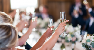 Champagne Cheers at Wedding Celebration